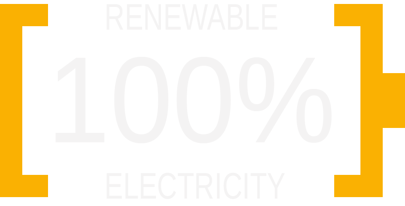 1005 renewable electricity